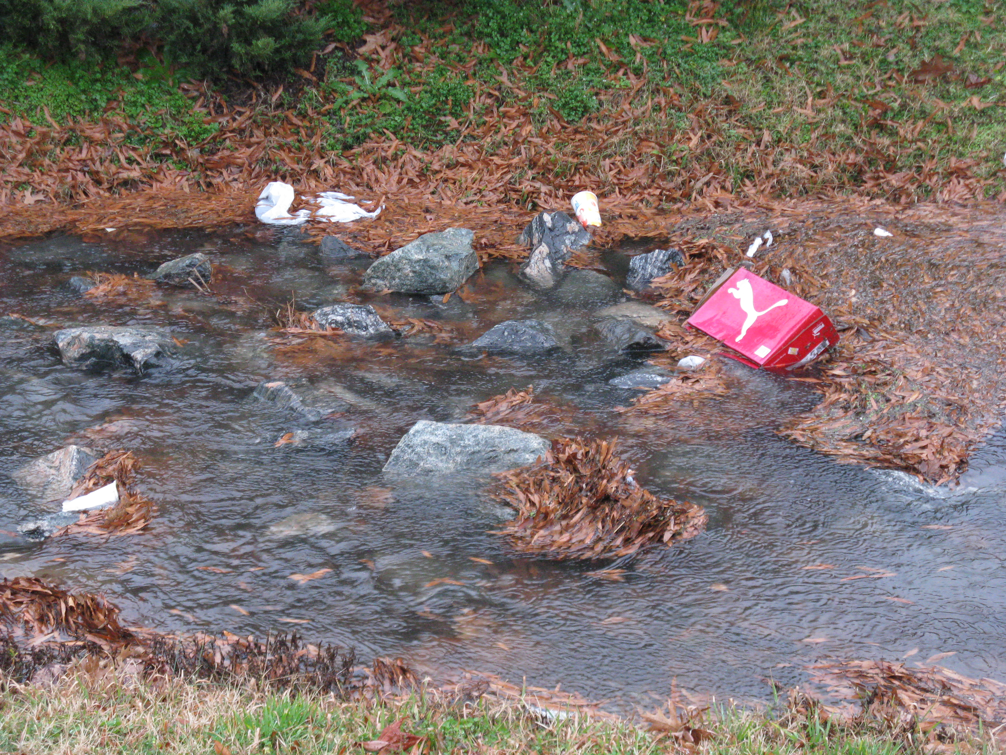Litter in stormwater