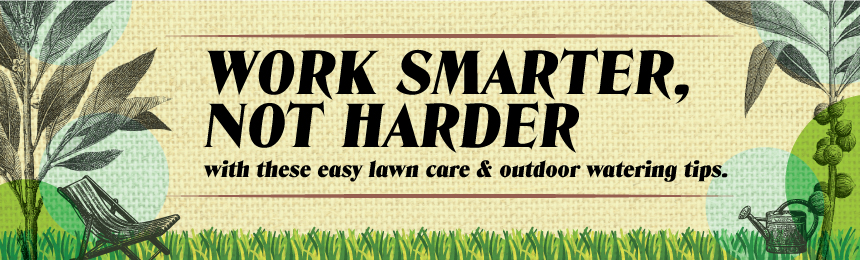 Great lawn care and wise watering tips