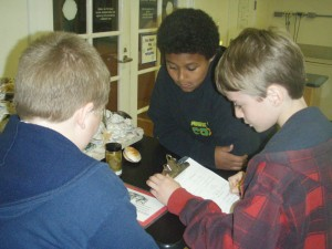 Trantwood Elementary students work in the Virginia Aquarium Bay Lab.