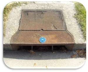 Storm Drain with Medallion