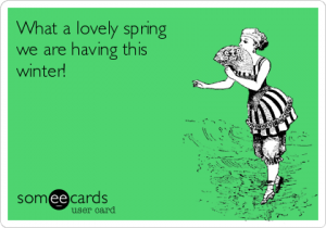 what-a-lovely-spring-we-are-having-this-winter-790af