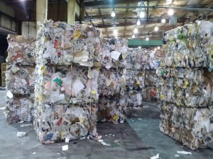 Bales of paper at Bay Disposal