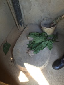 Toilet with Toilet Paper in Rwanda. Image by Pete Isaac.