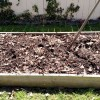 My compost bed in early spring is ready for action!