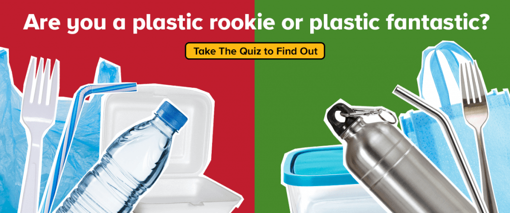 Are you a plastic rookie or plastic fantastic? Take The Quiz to Find Out