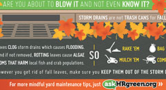 Don't Blow It This Fall Digital Advertisement Thumbnail