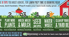 Lawn Tips Digital Advertisement Thumbnail