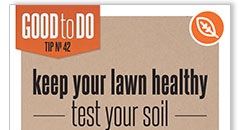 Test Your Soil Poster Thumbnail