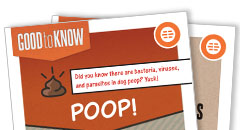 Pet Waste Rack Card Thumbnail